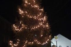 Weihnachtsbaum 2020 Unterhain