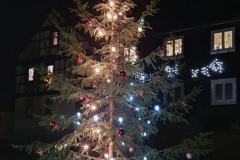 Weihnachtsbaum 2020 Barigau