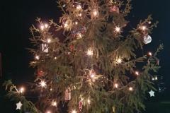 Weihnachtsbaum 2020 Oberhain